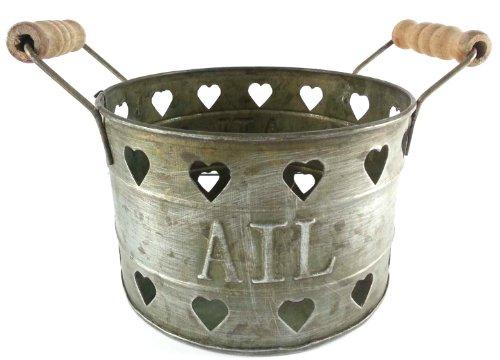 Pot ails en zinc