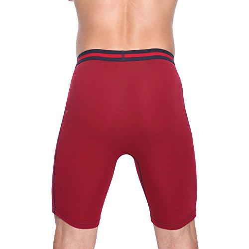 Nuofengkudu Pack 2er 3er & 4er Herren Boxershort Langes Bein c Sport Alltag Fitness Unterhosen Männer Unterwäsche Retroshorts S,M,L,XL,2XL 3 Pack-Rot/Grau/Blau