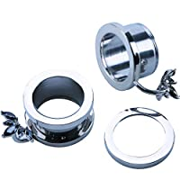 WBRWP 2pcs Stainless Steel Ear Plugs and Tunnels - Screw Ear Expander - Ear Gauges Stretcher Body Piercing Jewelry 2g-5/8