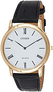 CITIZEN Mens Solar Powered Watch, Analog Display and Leather Strap AR1113-12B