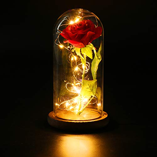 FunPa Ewige Rose Rot, Schönheit und Das Tier Rosen Geschenk Künstliche Blume Konservierte Rose im Glas Kuppel mit Holz Sockel LED Lichterketten Geschenk für Mädchen Hochzeit Geburtstag Muttertags