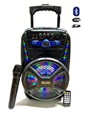 Cassa Acustica Amplificata Trolley Karaoke Bluetooth con Microfono Wireless