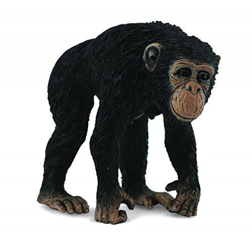 Collecta - Chimpance Hembra -M- 88493 (90188493)