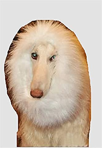 Pet dog wig costume lion mane wig funny lion head