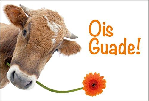 Kühlschrankmagnet Magnet Magnetschild zum Geburtstag bayerische Kuh Mundart