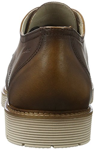 Marc Shoes Dover, Derby Homme Marron