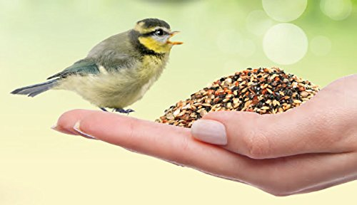 Peckish Nesting and Young Bird Seed Mix, 2 kg 3