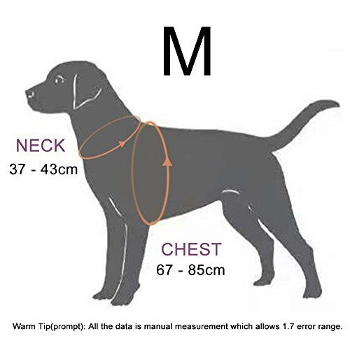Dog-Harness-PetLove-Soft-Leash-Padded-No-Pull-Dog-Harness-with-All-Kinds-of-Size-Medium-Black