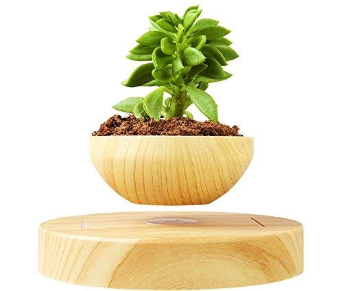 pot-de-fleurs-de-lvitation-et-sa-base-ensemble-par-blu-devil-durable-faux-bois-en-plastique-avec-une
