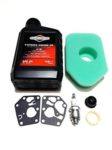 Sprint Handy-service (Briggs and Stratton Lawn Mower Service Kit Suitable for the Classic and Sprint by Outdoor Spares Limited)