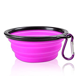 Dimart Expandable Collapsible Pet Dog Bowl Folding Puppy Food & Water Feeder with Climbing Button Carabiner for Outdoor Travel 41p0 2BGuXNZL