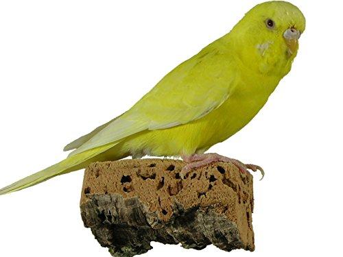 Korksitzbrett für Vögel - Größe S, M, L, XL, XXL - 100% Bio Vogelkäfig Zubehör - natürliches Kork Sitzbrett für Wellensittiche, Nymphensittiche, Papageien und Co. (S (2er Set je 6 x 5 cm))