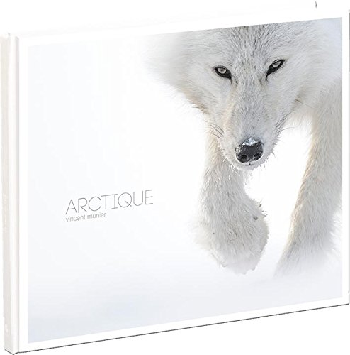 Arctique par Vincent Munier