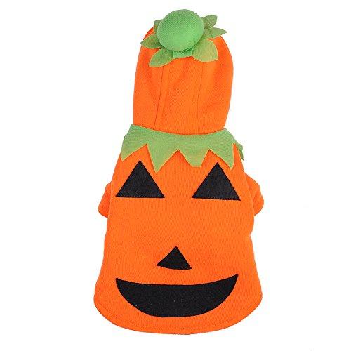 Molie mascota perro gato ropa disfraz de Halloween calabaza