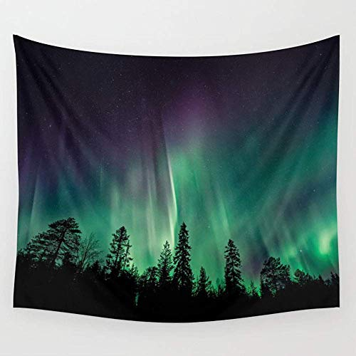 Alfreen Tapisserie-Dekor, Aurora Borealis Heavenly Northern Lights Wall Tapestry Hanging Tapestries,Boho Mandala Tapestry,Wall Art for Bedroom Living Room Dorm 80X60 inches -