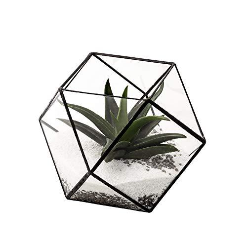 Ultra 14x14x14cm Crystal Style Clear Glass Terrarium Planters Geometrische Form Für die Verlauten Einzigartiges Herzstück Oder Windows-Shaken für Luftanlagen Fern Moss Succulents Indoor Garden (Kristalle Herzstück)