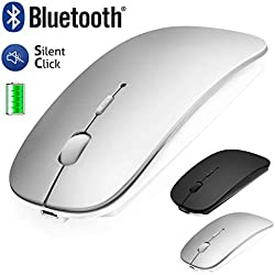 Souris Bluetooth Sans Fil pour Macbook/iPad/iPhone( iOS13.1.2 et Supérieur)/Android PC/Ordinateur, Mini Souris Silencieuse Rechargeable pour Windows/Linux /Mac,3 DPI Réglable Bluetooth4.0+2.4G Argenté