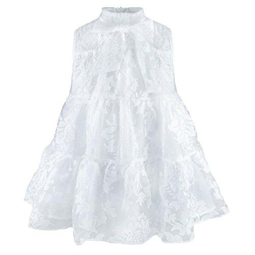 Blumen Prinzessin Mädchen Kleid Kinder Brautjungfer Kleider Tüll Hochzeit Röcke Ballkleid für Festzug Taufe Partei Elfenbein (3-4 Jahre, (Chinesische Kostüme Prinzessin)