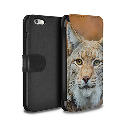 STUFF4 PU-Leder Hülle/Case/Tasche/Cover für Apple iPhone 6 / Jaguar Muster / Nordamerika Tiere Kollektion Luchs