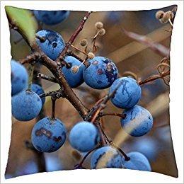Doormat bag Blueberry Bush - Throw Pillow Cover Case (18