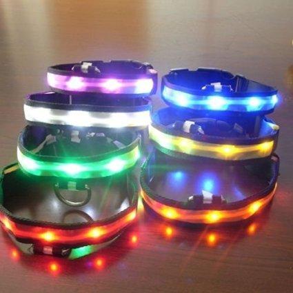 LED Visio Hunde und Katzen Leuchthalsband in 4-Farbes and 4 Farbe - 5