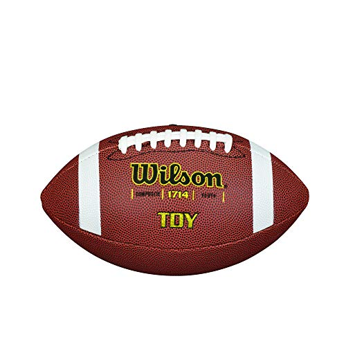 Wilson Unisex-Adult NFL JET BLACK OFFICIAL SIZE FB American Football