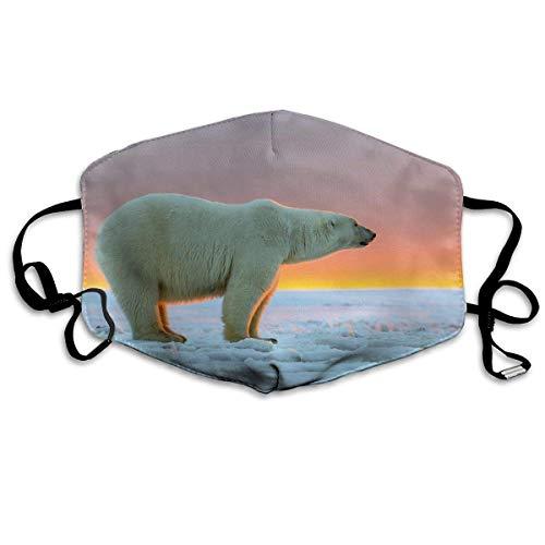 Vbnbvn Unisex Mundmaske,Wiederverwendbar Anti Staub Schutzhülle,Breathability Face Mouth Cover Mask - Breath Healthy Reirator Polar Bear Print Earloop Mask