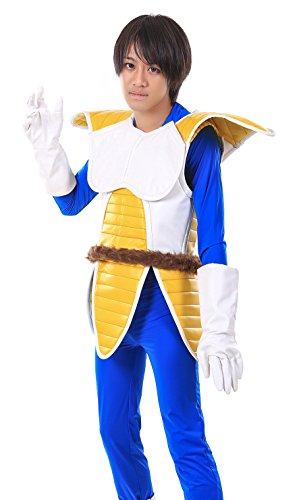 De-Cos Dragon Ball Z Prince of All Saiyans Vegeta Fighting Uniform V1 (Halloween Kostüme Dbz)