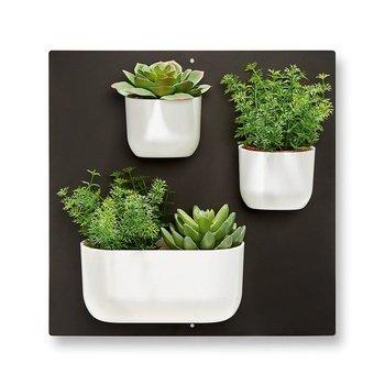 GeschenkIdeen.Haus - Wandgarten - Magnetischen Pflanzentöpfe für die Wand