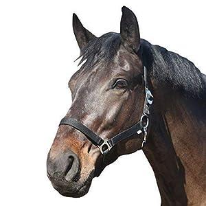 Eldorado Halfter Standard – schwarz – Warmblut