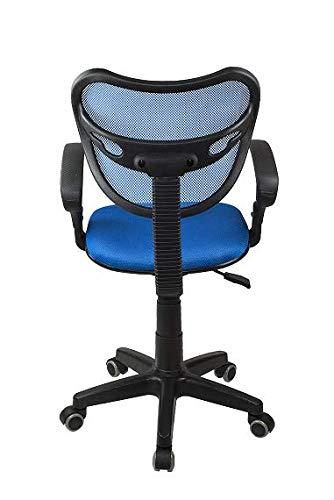 Profiseller Silla De Oficina Giratoria Ergonómica Ventilada Modelo PS 89 (Azul)