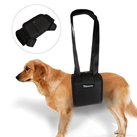 Portable Dog Lifting Support Harness - Hund Hilfe mit schwachen Vorder- oder Hinterbeinen Steh auf, geh, steig in Autos ein, klettere Treppen um zu deaktivieren, verletzt, älteres Haustier (Größe: XL)