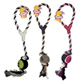 Fletcher dog rope toy with ball