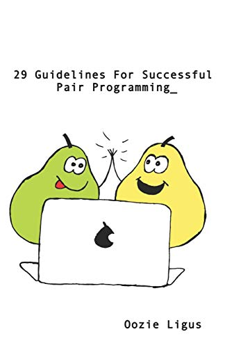 29 Guidelines for Successful Pair Programming