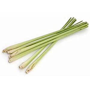 Fresh Thai Lemon Grass (100g)