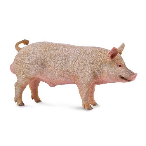 CollectA - Schwein männlich 88864 (Miniatur-kunststoff-schwein)