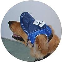 NEWBEER Sombrero para Perro con Visera para el Aire Libre, para el Verano, Gato, Deporte, con Orificios para los Oídos y Correa Ajustable para la Barbilla, Color Azul