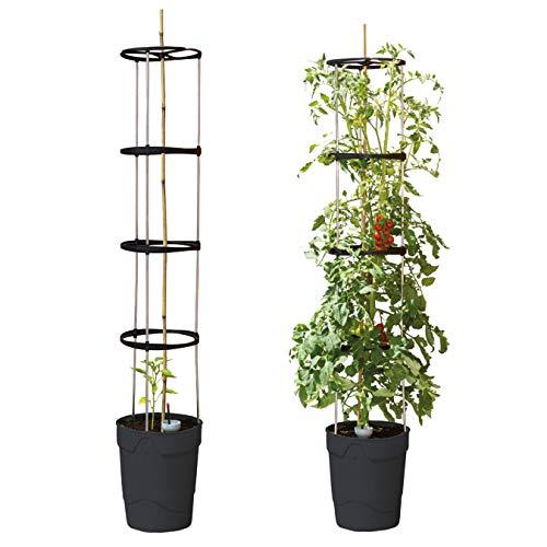 Beckmann Pflanzen-Aufzuchtturm Anthrazit 3er-Set