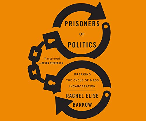 Prisoners of Politics: Breaking the Cycle of Mass Incarceration