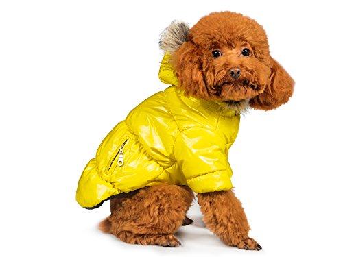 i Jacke für Haustiere, Jacke für Hunde, Jacke für Cat Winter Hundemantel, Hund, Kostüm, Kostüm, schützt vor kaltem Wetter, Luxuriös und, Halloween Verkauf, Small, Gelb ()