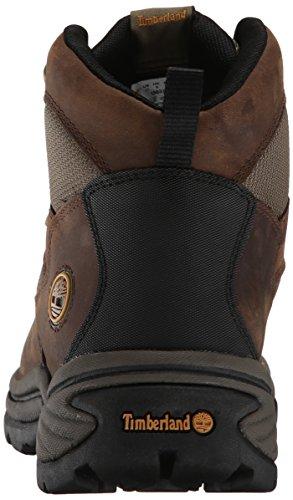 Timberland Chocorua Trail, Chaussures randonnée femme Marron (Dark Brown)