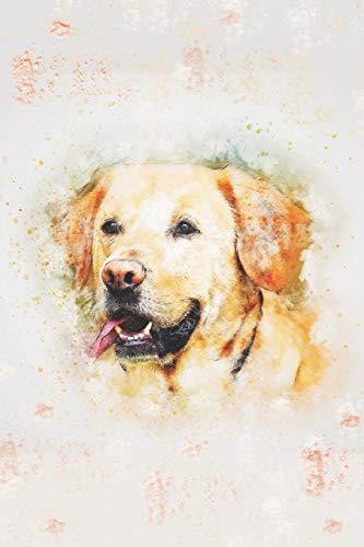 El Labrador Cuaderno: Hermoso Dorado perro cobrador can cuaderno - 120 Forrado...