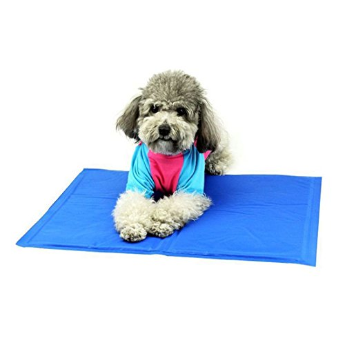 Wenosda Haustier-Kühlmatte, Hunde/Katzen Kalt-Pad für Boden, Autositze, Haustier-Betten & Zwinger (blau, 40x50cm/15.74x19.7IN) -