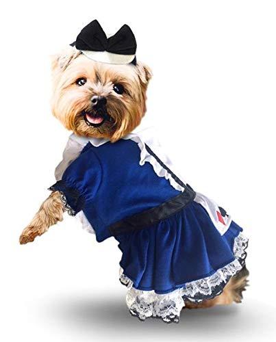 Puppe Love Kostüm Alice im Wunderland mit Charm und Schleife Kopfbedeckung für Hunde Größe XS bis L, M- Chest 16-18.5