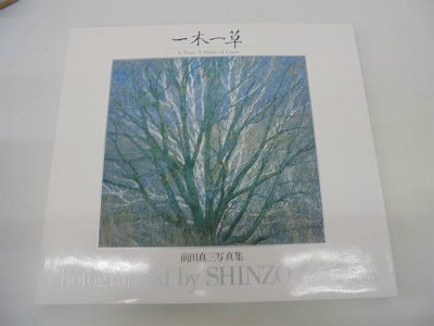 Tree, a Blade of Grass por Shinzo Maeda
