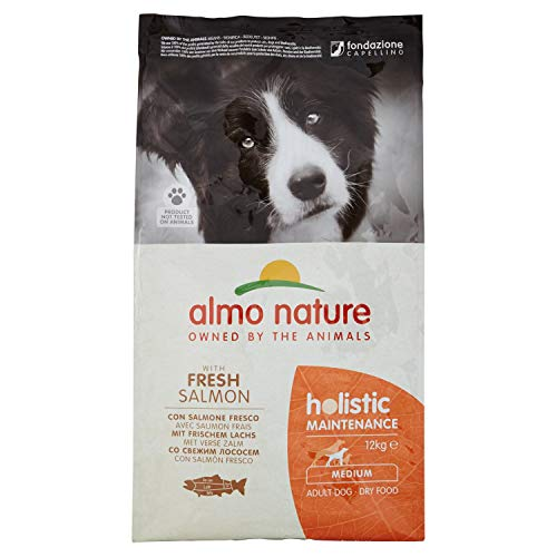 Holistic Dog Adult Medium mangime Secco Gusto Salmone e Riso kg.12