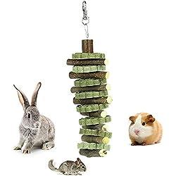 UMIWE Apple Bâtons pour Animal Domestique Snacks, Naturel Bâtons à mâcher pour Petit Animal Jouet à mâcher pour cochons d'Inde Chinchilla écureuil Lapins Parrot Hamster (20pcs)