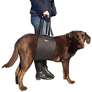 Labra Veterinarian Approved Dog Canine K9 Sling Lift Adjustable Straps Support Harness Helps with Loss of Stability… 7