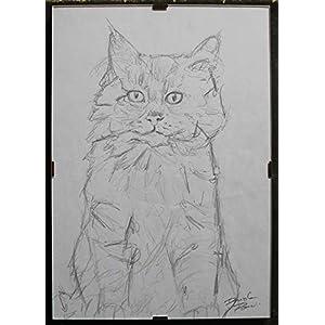 Die Katze-Bleistiftzeichnung auf Papier, handgefertigt von Davide Pacini, Maße cm 21×30 cm + Rahmen für den Tag. Hergestellt in Italy.Toscana, Lucca.Erstellen Sie Davide Pacini.