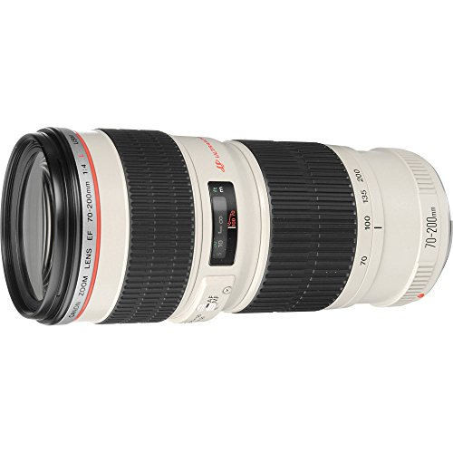Canon EF 70-200MM F/4L USM - Objetivo para Canon (distancia focal 70-200mm, apertura f/4, diámetro: 67mm) color blanco